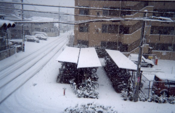 Dec.31.2004 We had great snow in Japan!